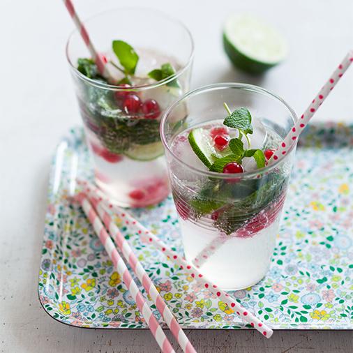 recette_allegee_purevia_stevia_VirginMojito